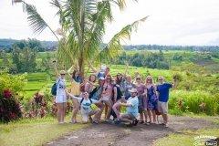 Рисовые поля на севере Бали