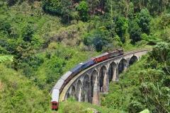 Экскурсии на Шри-Ланке на Новый Год 2018