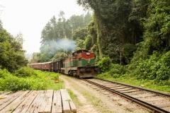 Прокатимся на таком поезде