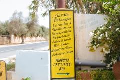 syorf-tur-v-marokko-v-avguste-2017-5