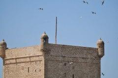 ekskursii-v-marokko-v-syorf-ture-92