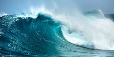 Анатомия волн и основные термины