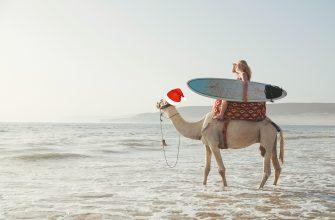 Сёрф тур в Марокко на Новый год 2018