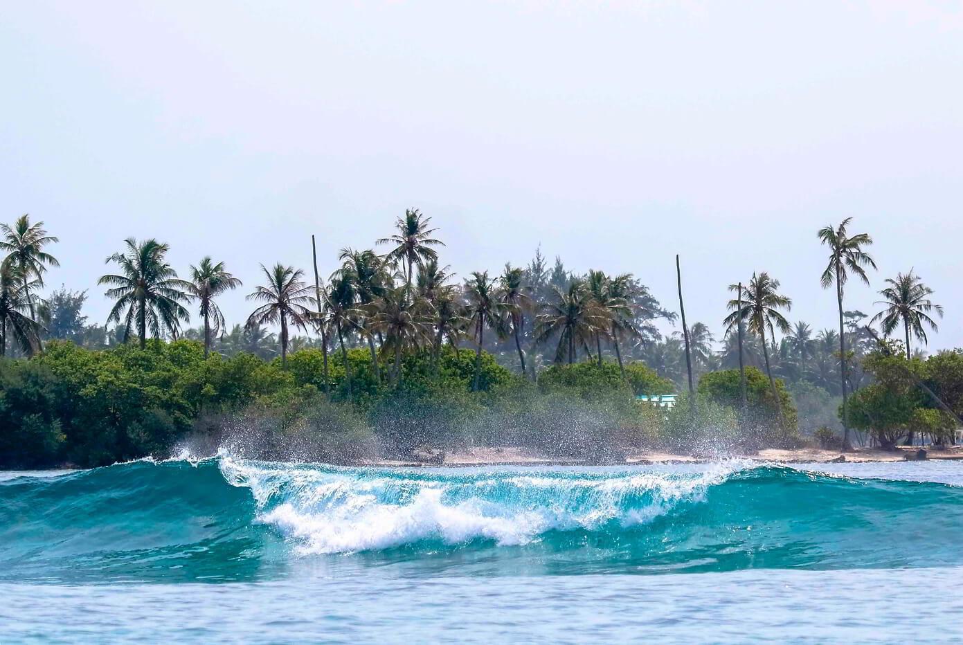 Сёрф-сафари на Мальдивах